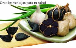 Cuáles son las propiedades del ajo negro?