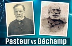 Los paradigmas de Pasteur y Bechamp enfrentados por el coronavirus